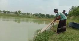 গোমস্তাপুরে মাছ চাষকে পেশা হিসেবে নিয়েছেন শাখাওয়াত