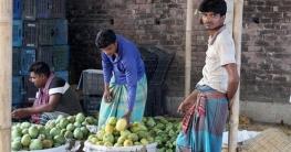 চাঁপাইয়ে বেনামি আমগুলোর নামকরণ হচ্ছে : জেলা প্রশাসন