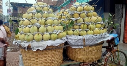 আরও মাসখানেক মিলবে চাঁপাইনবাবগঞ্জে আম