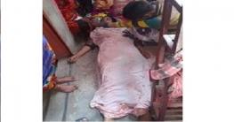চাঁপাইনবাবগঞ্জে গৃহবধূর আত্মহত্যা