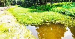 ভোলাহাটে গ্রামীণ রাস্তা ডুবে আছে বৃষ্টির পানিতে