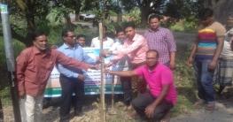 চাঁপাইনবাবগঞ্জ সদরে জয়ীতা`র বৃক্ষরোপণ