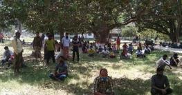 চাঁপাইনবাবগঞ্জে ঢাকাথেকে আসা ১৩৬ জন করোনা মুক্ত