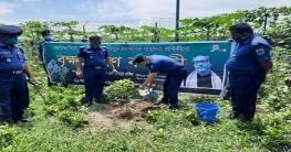 শোক দিবস উপলক্ষ্যে চাঁপাইনবাবগঞ্জে বৃক্ষ রোপণ ও স্বাস্থ্য সুরক্ষা