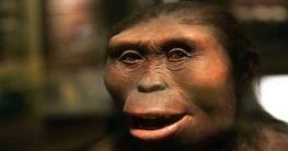 নতুন মনুষ্য প্রজাতির সন্ধান পাওয়া গেছে